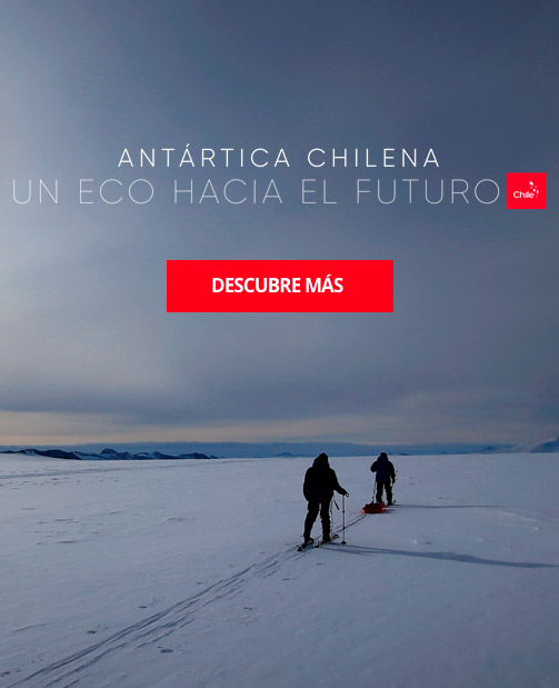 https://marcachile.cl/antartica-chilena/ | Chile