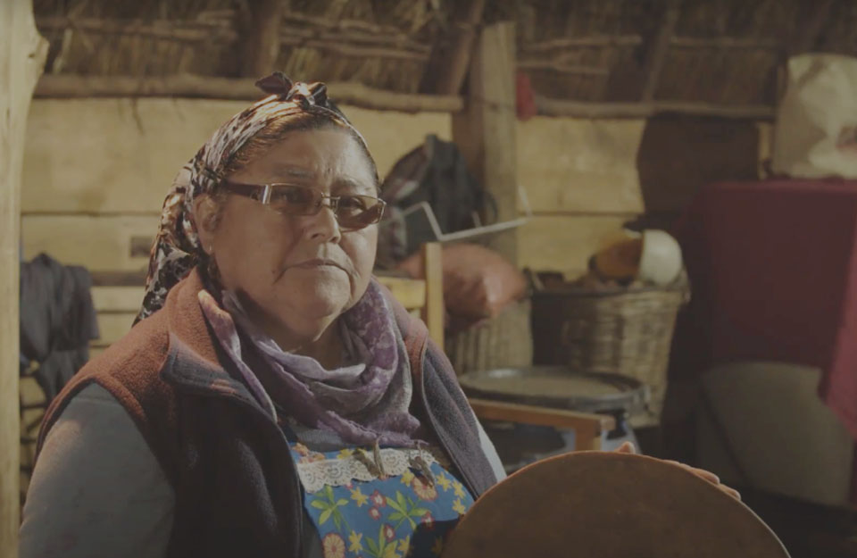 Llelliuquen in Puerto Saavedra: Tourism with a Mapuche worldview