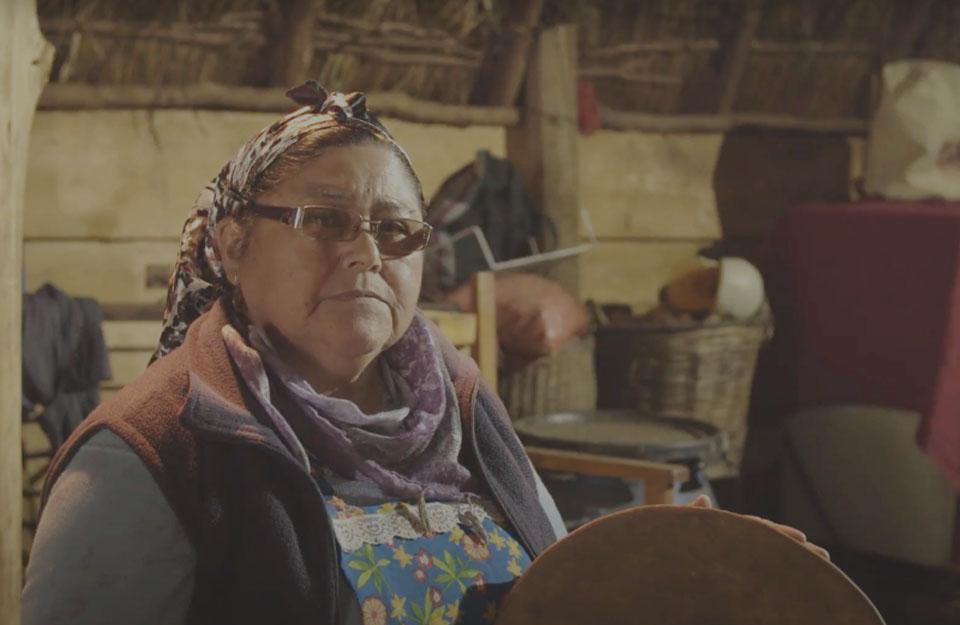 Llelliuquen en Puerto Saavedra: Turismo con cosmovisión mapuche | Marca Chile