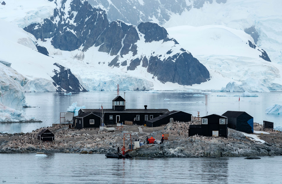 Chilean Antarctic Day: Exploration and research with global impact in the southernmost territory | Marca Chile