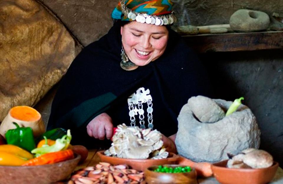 Gastronomía: alimentación de los Mapuches