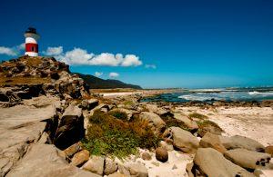 The Wonders of Mocha Island