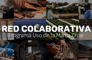 Más de 700 empresas usan la Marca Chile y dan vida a una nueva red colaborativa
