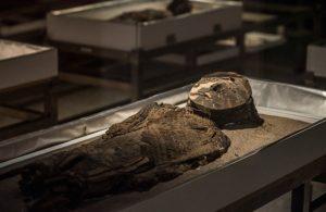 Momias Chinchorro, su historia y preservación
