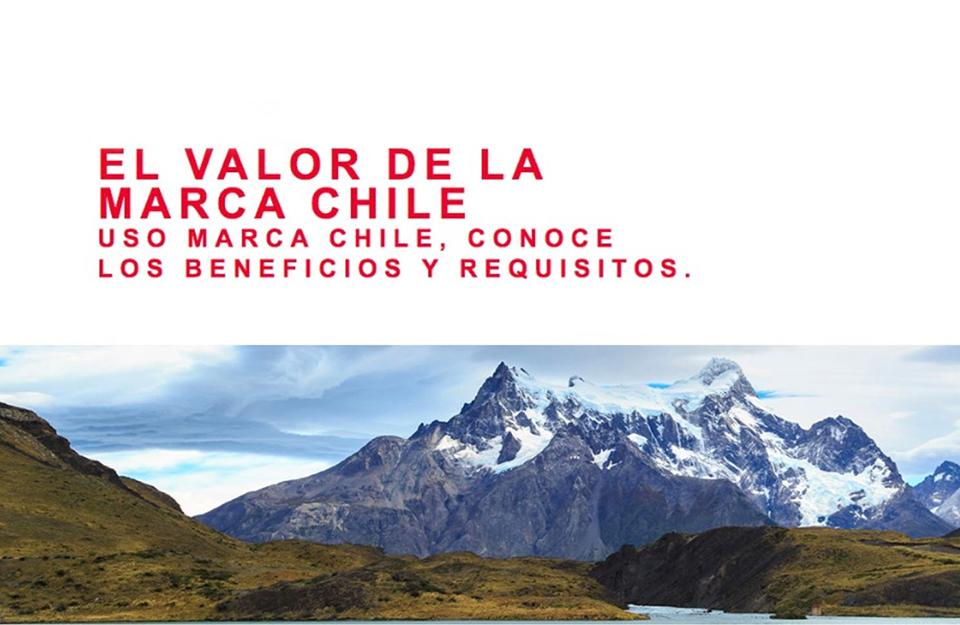Taller sobre el Valor de la Marca Chile en la región de Ñuble