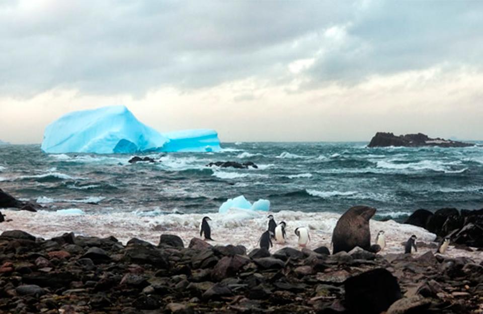 Un viaje al continente antártico | Marca Chile