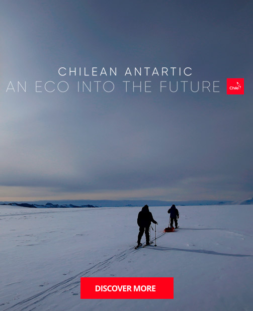 https://marcachile.cl/antartica-chilena/index_en.html | Marca Chile