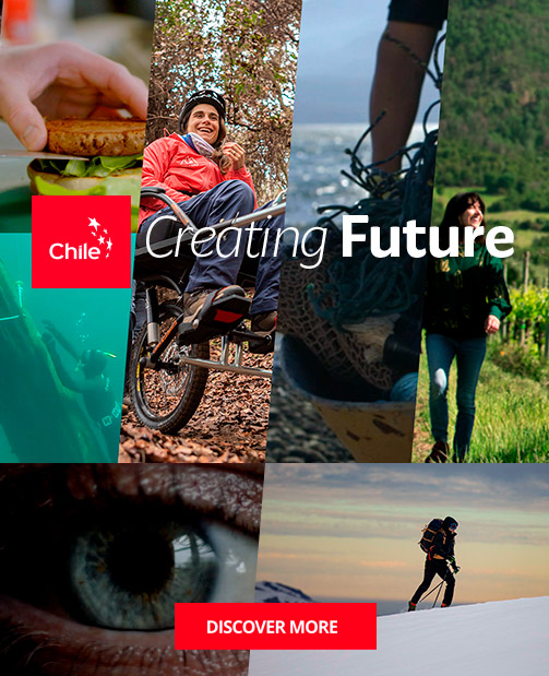 https://marcachile.cl/en/creating-future | Marca Chile