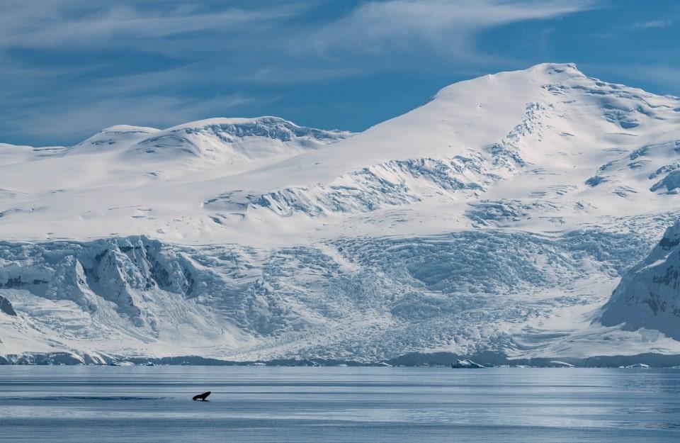 Estación polar científica construirá Chile en la Antártica | Marca Chile