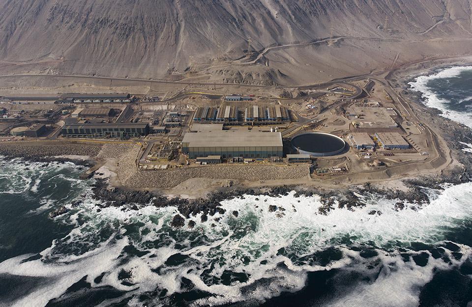 Bloom Alert: la innovación chilena premiada por el MIT que rompe paradigmas en sustentabilidad hídrica | Marca Chile