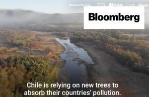 Chile: Camino a la carbono neutralidad