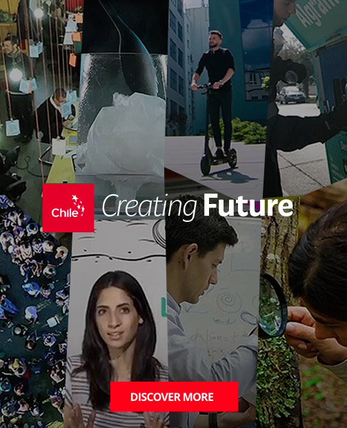 https://marcachile.cl/en/creating-future/ |Marca Chile