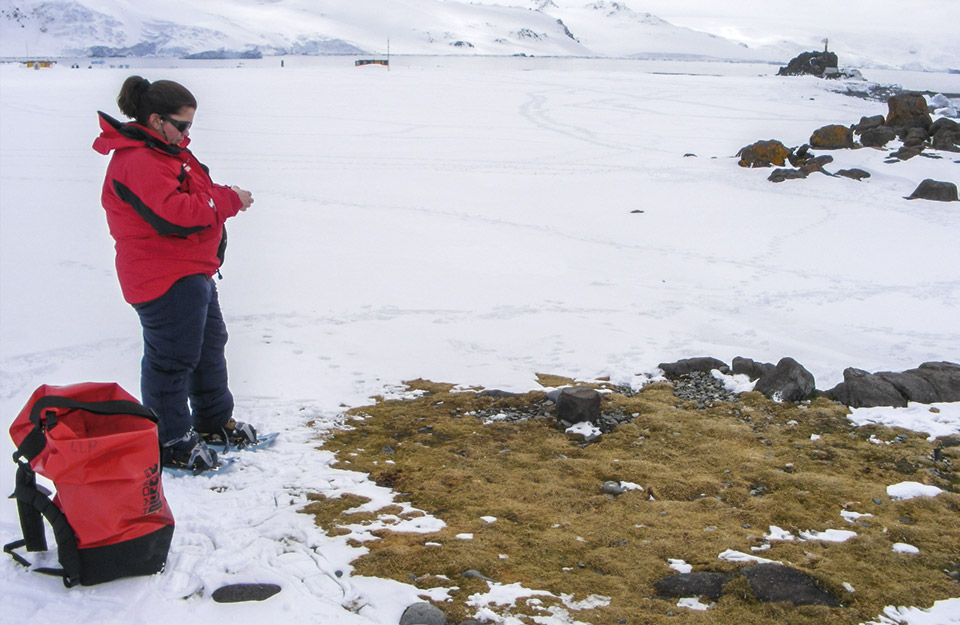 La guardiana de las plantas nativas de la Antártica