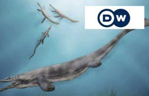 Hallan restos de gigantesco reptil marino en Chile