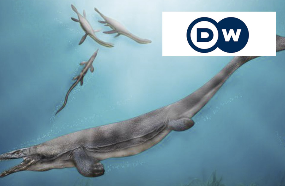 Remains of giant marine reptile found in Chile