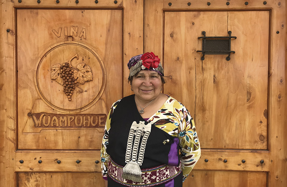 Innovation, technology and wellbeing: three Mapuche enterprises you should know about | Marca Chile
