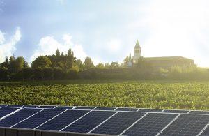 ¿Cómo Chile se convirtió en uno de los países productores de vino más sostenibles  del mundo?