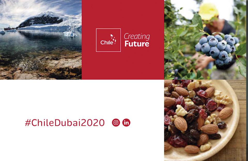 Expo Dubái: Chile presente en la primera feria mundial pospandemia | Marca Chile
