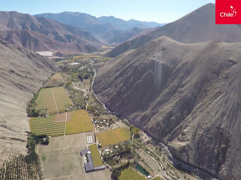 Agricultura en el Valle del Elqui | Marca Chile | Toolkit