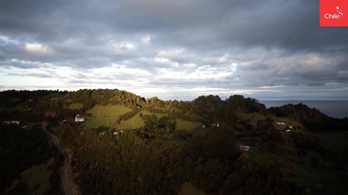 Campo del sur de Chile | Marca Chile | Toolkit