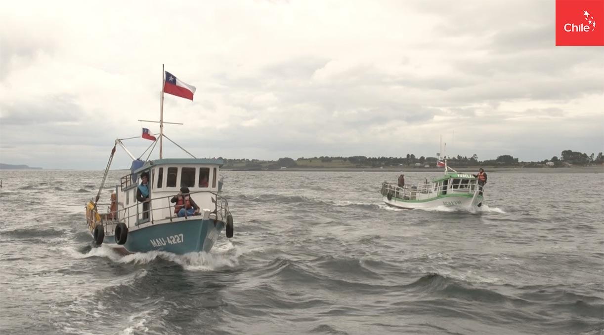 Embarcaciones | Marca Chile | Toolkit