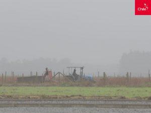 Tractor en el campo | Toolkit | Marca Chile