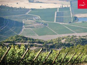 Agroindustria   Toolkit   Marca Chile