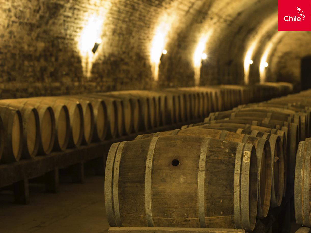 Almacenamiento de vino | Marca Chile | Toolkit