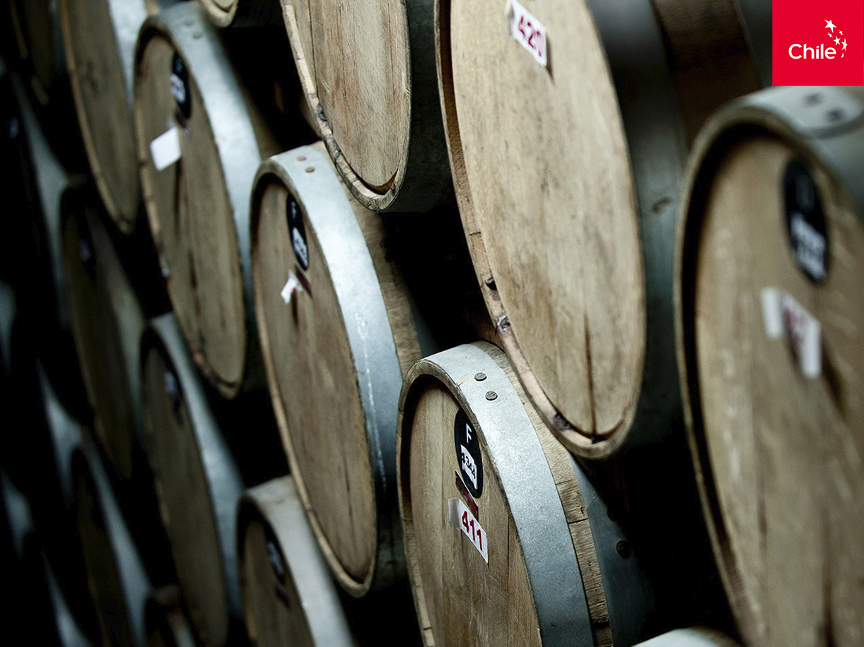Barricas de vino | Marca Chile | Toolkit