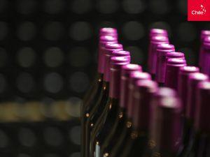 Botellas de vino | Toolkit | Marca Chile