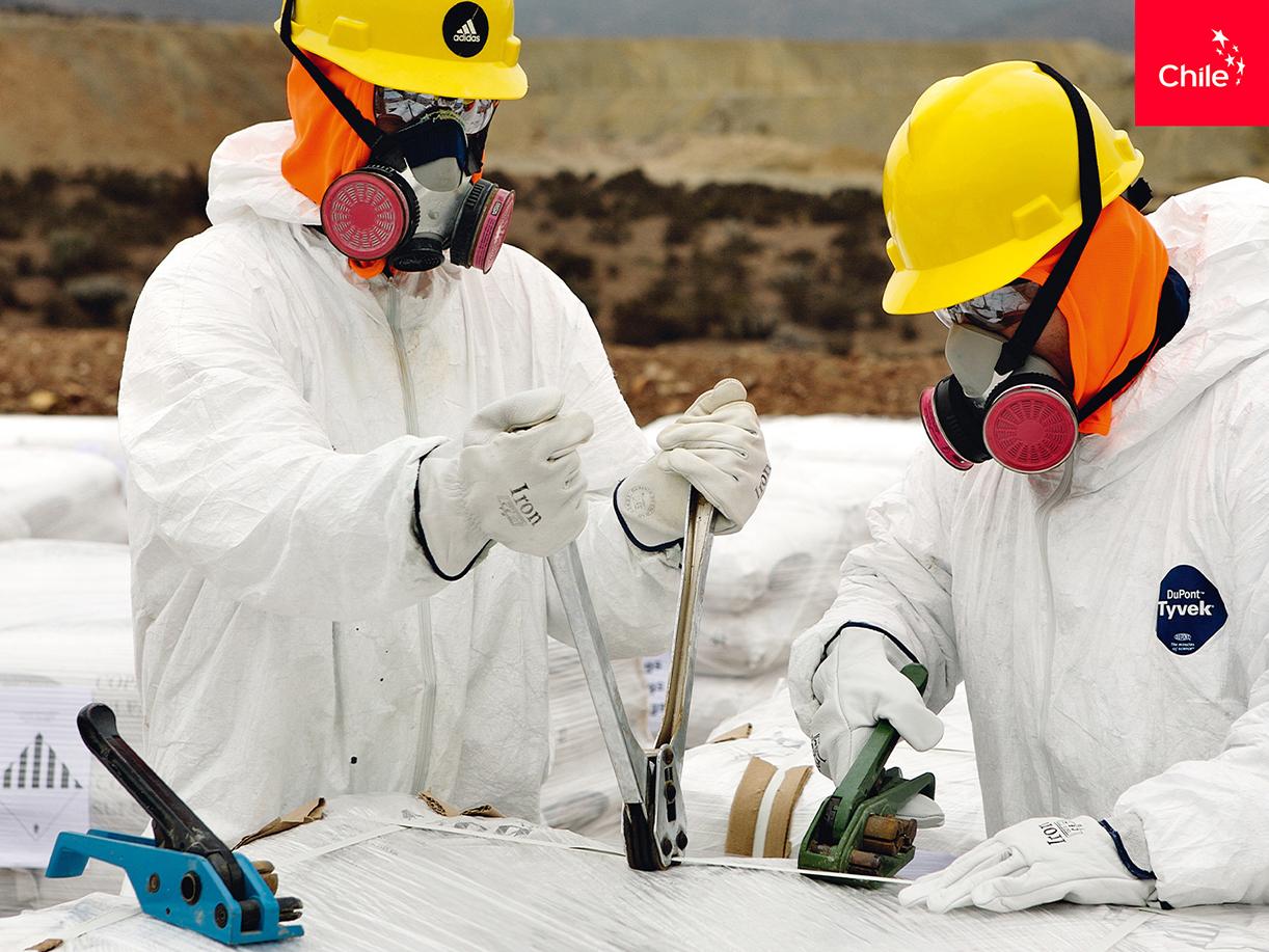 Estudio Minerales Ácidos, Planta Lambert | Marca Chile | Toolkit