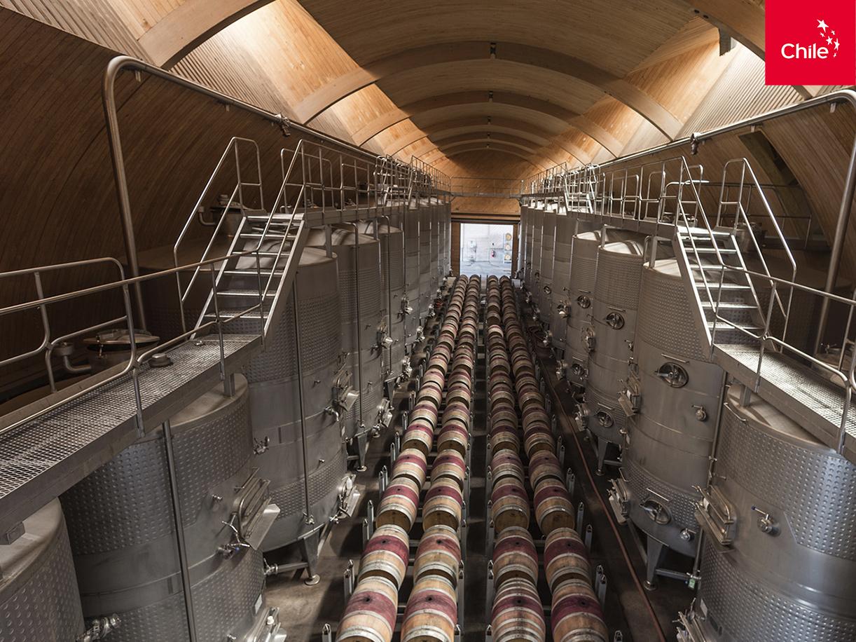 Producción de vino | Marca Chile | Toolkit