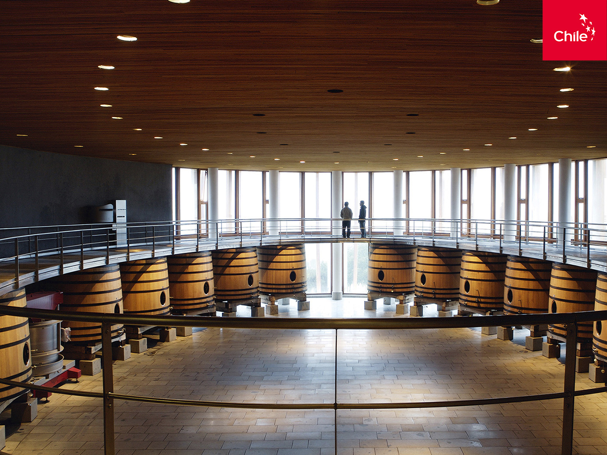 Reserva de vinos | Marca Chile | Toolkit